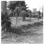 bl_castello carrobio 1-1.jpg