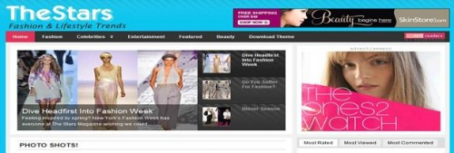bli-site-web-thestars-wordpress-theme.jpg